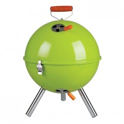 mini portable bbq/braai